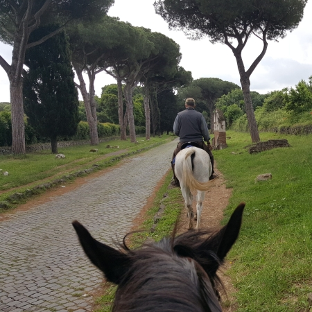 The tree-lined Appian Way